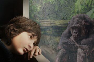 Naakte aap