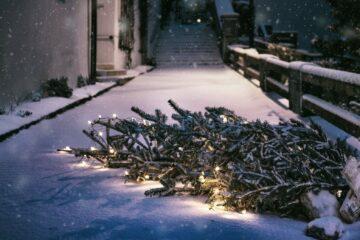 gevallen kerstboom